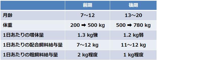 飼育期間と給与される飼料の量(乳用種去勢牛)