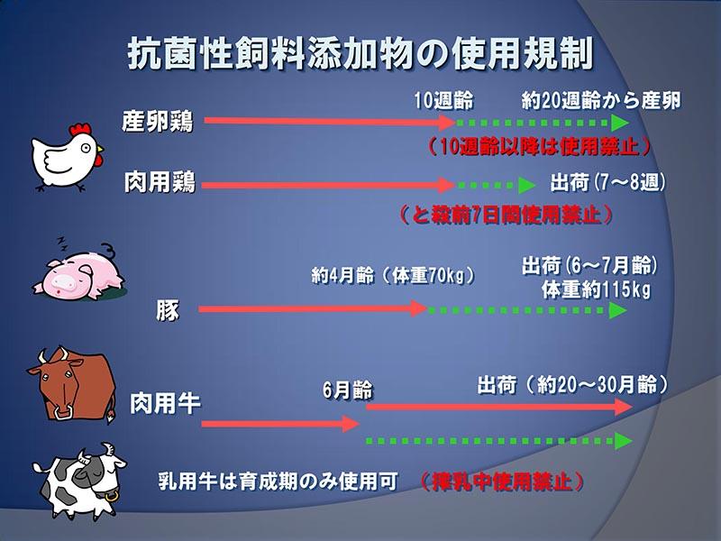 抗菌性飼料添加物の使用規制